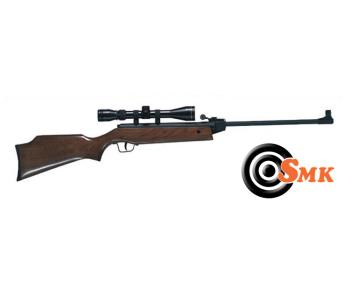 junior starter air rifle